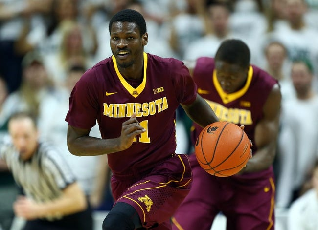 Minnesota vs. UMKC - 11/13/15 College Basketball Pick, Odds, and Prediction
