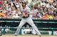 Jul 31, 2013; Detroit, MI, USA; Washington Nationals right fielder Jayson Werth (28) at bat against the Detroit Tigers at Comerica Park. Mandatory Credit: Rick Osentoski-USA TODAY Sports