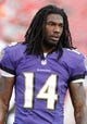 Aug 8, 2013; Tampa, FL, USA; Baltimore Ravens wide receiver Marlon Brown (14) prior to the game against the Tampa Bay Buccaneers at Raymond James Stadium. Mandatory Credit: Kim Klement-USA TODAY Sports