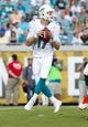 Aug 9, 2013; Jacksonville, FL, USA; Miami Dolphins quarterback Ryan Tannehill (17) drops back during the first quarter against the Jacksonville Jaguars at EverBank Field. Mandatory Credit: Kim Klement-USA TODAY Sports