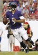 Aug 8, 2013; Tampa, FL, USA; Baltimore Ravens quarterback Joe Flacco (5) drops back to pass the ball during the first quarter against the Tampa Bay Buccaneersn at Raymond James Stadium. Mandatory Credit: Kim Klement-USA TODAY Sports