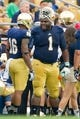 Aug 31, 2013; South Bend, IN, USA; Notre Dame Fighting Irish defensive lineman Louis Nix (1) stands on the sideline in the first quarter against the Temple Owls at Notre Dame Stadium. Notre Dame won 28-6. Mandatory Credit: Matt Cashore-USA TODAY Sports