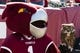 Sep 7, 2013; Philadelphia, PA, USA; Temple Owls mascot Hooter stands next to Stella the owl prior to the game against the Houston Cougars at Lincoln Financial Field. Houston defeated temple 22-13. Mandatory Credit: Howard Smith-USA TODAY Sports