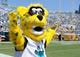 Sep 8, 2013; Jacksonville, FL, USA; Jacksonville Jaguars mascot Jackson DeVille reacts after a play during the game against the Kansas City Chiefs at EverBank Field. Mandatory Credit: Melina Vastola-USA TODAY Sports