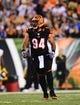 Sep 16, 2013; Cincinnati, OH, USA; Cincinnati Bengals defensive tackle Domata Peko (94) against the Pittsburgh Steelers at Paul Brown Stadium. Mandatory Credit: Andrew Weber-USA TODAY Sports