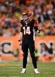 Sep 16, 2013; Cincinnati, OH, USA; Cincinnati Bengals quarterback Andy Dalton (14) against the Pittsburgh Steelers at Paul Brown Stadium. Mandatory Credit: Andrew Weber-USA TODAY Sports