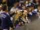 Sep 24, 2013; Denver, CO, USA; Colorado Rockies left fielder Corey Dickerson (right) gets a high five from shortstop Troy Tulowitzki (left) after hitting a home run during the fourth inning against the Boston Red Sox at Coors Field. Mandatory Credit: Chris Humphreys-USA TODAY Sports