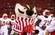 Sep 28, 2013; Columbus, OH, USA; Wisconsin Badgers mascot on the field prior the game against the Ohio State Buckeyes at Ohio Stadium. Ohio State Buckeyes defeated Wisconsin Badgers 31-24. Mandatory Credit: Andrew Weber-USA TODAY Sports