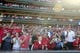 Sep 29, 2013; St. Louis, MO, USA; St. Louis Cardinals fans celebrate after defeating the Chicago Cubs at Busch Stadium. St. Louis defeated Chicago 4-0 and clinched the best record in the National League. Mandatory Credit: Jeff Curry-USA TODAY Sports