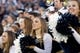 Sep 27, 2013; Provo, UT, USA; Brigham Young Cougars cheerleaders during the first half against the Middle Tennessee Blue Raiders at Lavell Edwards Stadium. Brigham Young won 37-10. Mandatory Credit: Russ Isabella-USA TODAY Sports