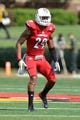 Sep 21, 2013; Louisville, KY, USA; Louisville Cardinals safety Hakeem Smith (29) prepares in coverage during the first quarter of play against the FIU Golden Panthers at Papa John's Cardinal Stadium. Louisville defeated FIU 72-0.  Mandatory Credit: Jamie Rhodes-USA TODAY Sports
