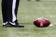 Oct 6, 2013; St. Louis, MO, USA; A NFL football pink ribbon in honor of breast cancer awareness month is seen on the turf during a game between the St. Louis Rams and the Jacksonville Jaguars at The Edward Jones Dome. Mandatory Credit: Scott Kane-USA TODAY Sports