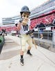 Sep 21, 2013; Madison, WI, USA;  Purdue Boilermakers mascot Purdue Pete performs during the game against the Wisconsin Badgers at Camp Randall Stadium. Wisconsin defeated Purdue 41-10.  Mandatory Credit: Jeff Hanisch-USA TODAY Sports
