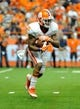 Oct 5, 2013; Syracuse, NY, USA; Clemson Tigers running back Roderick McDowell (25) runs with the ball during the third quarter against the Syracuse Orange at the Carrier Dome.  Clemson defeated Syracuse 49-14.  Mandatory Credit: Rich Barnes-USA TODAY Sports