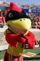 Oct 12, 2013; Lubbock, TX, USA; The Iowa State Cyclones mascot on the sidelines in the game with the Texas Tech Red Raiders at Jones AT&T Stadium. Mandatory Credit: Michael C. Johnson-USA TODAY Sports