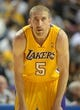 Oct 8, 2013; Ontario, CA, USA; Los Angeles Lakers guard Steve Blake (5) during the game against the Denver Nuggets at Citizens Business Bank Arena. The Lakers defeated the Nuggets 90-88. Mandatory Credit: Kirby Lee-USA TODAY Sports