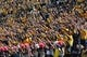 Oct 19, 2013; Columbia, MO, USA; Missouri Tigers fans show their support during the first half of the game against the Florida Gators at Faurot Field. Missouri won 36-17. Mandatory Credit: Denny Medley-USA TODAY Sports