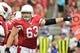 Oct 27, 2013; Phoenix, AZ, USA; Arizona Cardinals center Lyle Sendlein (63) signals to teammates during the first half against the Atlanta Falcons at University of Phoenix Stadium. Mandatory Credit: Matt Kartozian-USA TODAY Sports