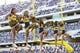 Nov 2, 2013; Fort Worth, TX, USA; West Virginia Mountaineers cheerleaders perform during the game against the TCU Horned Frogs at Amon G. Carter Stadium. West Virginia won 30-27. Mandatory Credit: Kevin Jairaj-USA TODAY Sports