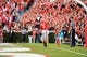 Nov 9, 2013; Athens, GA, USA; Georgia Bulldogs running back Todd Gurley (3) reacts after a touchdown against the Appalachian State Mountaineers during the second half at Sanford Stadium. Georgia defeated Appalachian State 45-6. Mandatory Credit: Dale Zanine-USA TODAY Sports
