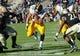 Nov 9, 2013; West Lafayette, IN, USA; Iowa Hawkeyes running back Jordan Canzeri (33) runs through the line during the second half  at Ross Ade Stadium. Mandatory Credit: Sandra Dukes-USA TODAY Sports