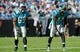 Nov 3, 2013; Charlotte, NC, USA; Carolina Panthers wide receiver Steve Smith (89) and wide receiver Brandon LeFell (11) line up for the play during the game against the Atlanta Falcons at Bank of America Stadium. Mandatory Credit: Sam Sharpe-USA TODAY Sports
