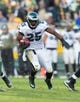 Nov 10, 2013; Green Bay, WI, USA; Philadelphia Eagles running back LeSean McCoy (25) during the game against the Green Bay Packers at Lambeau Field.  Philadelphia won 27-13.  Mandatory Credit: Jeff Hanisch-USA TODAY Sports
