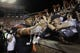 Nov 16, 2013; Auburn, AL, USA; Auburn Tigers quarterback Nick Marshall (14) celebrates with fans after the Tigers beat the Georgia Bulldogs 43-38 at Jordan Hare Stadium. Mandatory Credit: John Reed-USA TODAY Sports