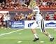 Nov 9, 2013; Tucson, AZ, USA; UCLA Bruins placekicker Sean Covington (42) punts the ball during the third quarter against the Arizona Wildcats at Arizona Stadium. Mandatory Credit: Casey Sapio-USA TODAY Sports