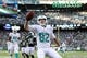 Dec 1, 2013; East Rutherford, NJ, USA; Miami Dolphins wide receiver Brian Hartline (82) runs into the end zone for a touchdown against the New York Jets during the third quarter of a game at MetLife Stadium. The Dolphins defeated the Jets 23-3. Mandatory Credit: Brad Penner-USA TODAY Sports