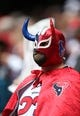 Dec 1, 2013; Houston, TX, USA; Houston Texans fan dress as a wrestler during the game against the New England Patriots at Reliant Stadium. Mandatory Credit: Matthew Emmons-USA TODAY Sports