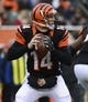 Dec 8, 2013; Cincinnati, OH, USA; Cincinnati Bengals quarterback Andy Dalton (14) looks to throw a pass during the second half of the game at Paul Brown Stadium. Cincinnati Bengals beat Indianapolis Colts 42-28 Mandatory Credit: Marc Lebryk-USA TODAY Sports