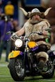 Dec 1, 2013; Minneapolis, MN, USA; Minnesota Vikings mascot Ragnar leads the team onto the field before the game with the Chicago Bears at Mall of America Field at H.H.H. Metrodome. Vikings win 23-20 in overtime. Mandatory Credit: Bruce Kluckhohn-USA TODAY Sports