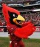 Dec 8, 2013; Phoenix, AZ, USA; Arizona Cardinals mascot Big Red stands on the sidelines during the fourth quarter against the St. Louis Rams at University of Phoenix Stadium. Arizona won 30-10. Mandatory Credit: Casey Sapio-USA TODAY Sports