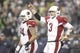 Dec 22, 2013; Seattle, WA, USA; Arizona Cardinals quarterback Carson Palmer (3) signals a first down following a pass interference penalty called against the Seattle Seahawks during the fourth quarter at CenturyLink Field. Mandatory Credit: Joe Nicholson-USA TODAY Sports