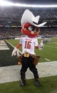 Dec 30, 2013; San Diego, CA, USA; Texas Tech Red Raiders mascot Raider Red poses during the 2013 Holiday Bowl against the Arizona State Sun Devils at Qualcomm Stadium. Mandatory Credit: Kirby Lee-USA TODAY Sports