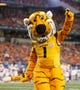 Jan 3, 2014; Arlington, TX, USA; Missouri Tigers mascot Truman on the field during the game against the Oklahoma State Cowboys at the 2014 Cotton Bowl at AT&T Stadium. Missouri beat Oklahoma State 41-31. Mandatory Credit: Tim Heitman-USA TODAY Sports