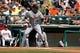 Mar 2, 2014; Lake Buena Vista, FL, USA; Detroit Tigers designated hitter Victor Martinez (41) at bat against the Atlanta Braves at Champion Stadium. Mandatory Credit: Kim Klement-USA TODAY Sports