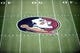 Apr 12, 2014; Tallahassee, FL, USA; The Florida State Seminoles logo before the start of the spring game at Doak Campbell Stadium. Mandatory Credit: Melina Vastola-USA TODAY Sports