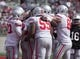 Apr 12, 2014; Columbus, OH, USA; The Ohio State gray team celebrates a touchdown by Ohio State gray team running back Warren Ball (28) during the Ohio State Buckeyes spring game at Ohio Stadium. The scarlet team won the game 17-7. Mandatory Credit: Greg Bartram-USA TODAY Sports