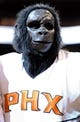Apr 2, 2014; Phoenix, AZ, USA; The Phoenix Suns mascot the Gorilla stands on the court during a timeout during the third quarter against the Los Angeles Clippers at US Airways Center. The Clippers won 112-108. Mandatory Credit: Casey Sapio-USA TODAY Sports
