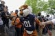 Apr 19, 2014; Auburn, AL, USA;  The Auburn Tigers mascot Aubie leads the team through Tiger Walk prior to the start of the A-Day spring game at Jordan Hare Stadium. Mandatory Credit: John Reed-USA TODAY Sports