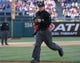 May 4, 2014; Philadelphia, PA, USA; Home plate umpire Sean Barber (29) in a game between the Philadelphia Phillies and Washington Nationals at Citizens Bank Park. The Phillies defeated the Nationals 1-0.  Mandatory Credit: Bill Streicher-USA TODAY Sports