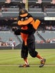 Jun 10, 2014; Baltimore, MD, USA; The Baltimore Orioles mascot on the field prior to a game against the Boston Red Sox at Oriole Park at Camden Yards. Mandatory Credit: Joy R. Absalon-USA TODAY Sports