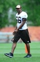 Jun 12, 2014; Berea, OH, USA; Cleveland Browns linebacker Karlos Dansby during minicamp at Browns training facility. Mandatory Credit: Andrew Weber-USA TODAY Sports