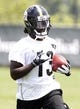 Jun 17, 2014; Pittsburgh, PA, USA; Pittsburgh Steelers running back Dri Archer (13) participates in drills during minicamp at the UPMC Sports Performance Complex. Mandatory Credit: Charles LeClaire-USA TODAY Sports
