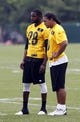 Jun 17, 2014; Pittsburgh, PA, USA; Pittsburgh Steelers defensive backs Cortez Allen (28) and Troy Polamalu (right) observe drills  during minicamp at the UPMC Sports Performance Complex. Mandatory Credit: Charles LeClaire-USA TODAY Sports