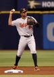 Jun 17, 2014; St. Petersburg, FL, USA; Baltimore Orioles second baseman Jonathan Schoop (6) throws the ball against the Tampa Bay Rays at Tropicana Field. Mandatory Credit: Kim Klement-USA TODAY Sports
