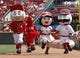 Jul 6, 2014; Cincinnati, OH, USA; Cincinnati Reds mascots race down the first base line during a game with the Milwaukee Brewers at Great American Ball Park. Mandatory Credit: David Kohl-USA TODAY Sports
