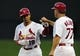 Aug 20, 2014; St. Louis, MO, USA; St. Louis Cardinals center fielder Jon Jay (19) is congratulated by first base coach Chris Maloney (77) after hitting a single during the third inning against the Cincinnati Reds at Busch Stadium. Mandatory Credit: Jeff Curry-USA TODAY Sports
